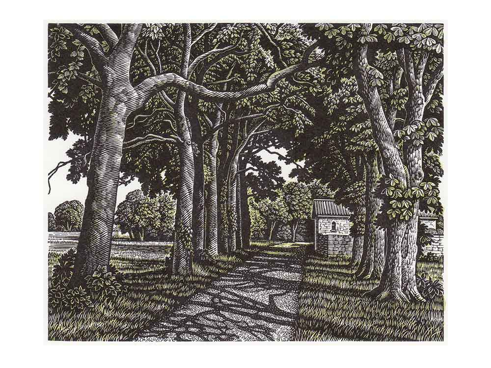 Howard Phipps, Avenue of Trees near Poitiers