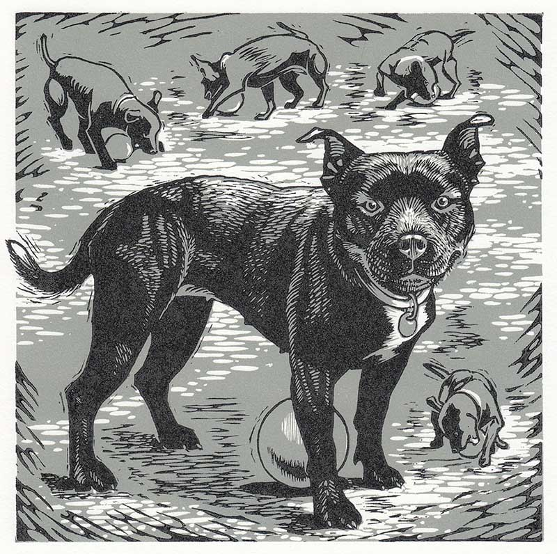 Ray Susan The Society Of Wood Engravers